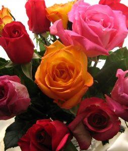 najpopularniejsze kwiaty w polsce